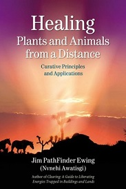 Image for Healing Plants and Animals from a Distance: Curative Principles and Application